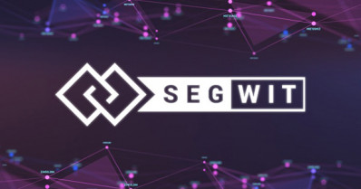 Segregated Witness (SegWit) update